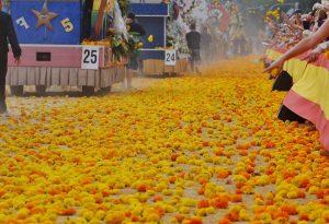 Feria de Juillet : La batalla de flores