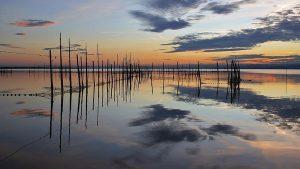 Découverte : 7 parcs naturels autour de Valence