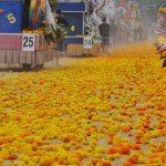 Batalla de flores de Valence