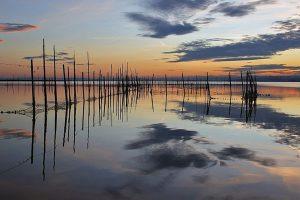 Lagune de l'Albufera
