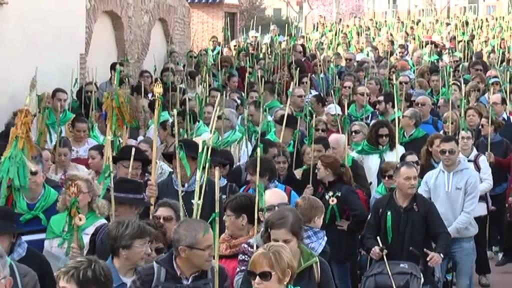 La procession des roseaux (Romeria de las cañas) lors des festivités de la Magdalena à Castellón (Espagne)
